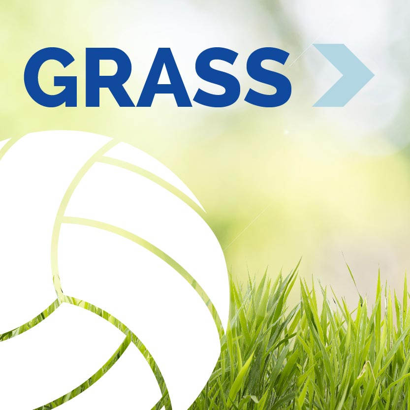 Grass Volleyball Event